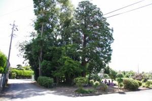 千引神社付近の祠