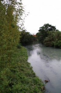祓川橋から望む祓川下流方面