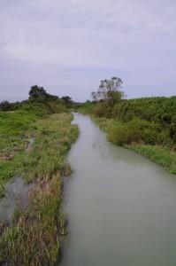 祓川から望む新川橋の下流方向