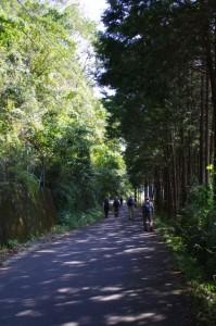 誕生寺へ(中勢鉄道の廃線跡)