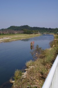 雲出川(大仰橋下流側)