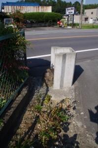 コースマップ(11660)地点の手前の石?