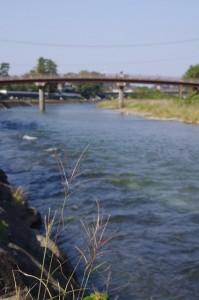 五十鈴川下流方向 新橋を望む