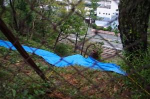 鳥羽城跡発掘現場付近 176