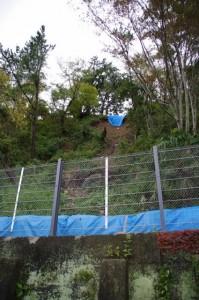 鳥羽城跡 発掘現場周辺 192