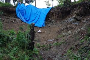 鳥羽城跡 発掘現場周辺 194