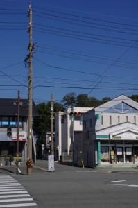 常磐交差点から望む清野井庭神社の社叢