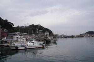 桃寿橋からの風景