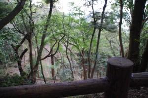 戦国武将 鳥羽主水の砦跡からの風景