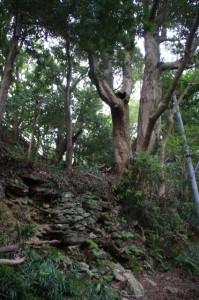 日和山(鳥羽)から賀多神社へ