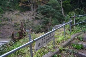 日和山(鳥羽)から賀多神社への階段