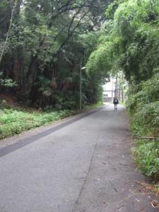 蚊野神社付近