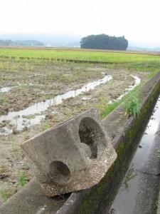 外城田川農業センターから朽羅神社へ