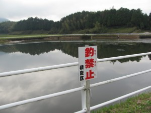 幸神社付近の池