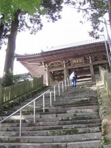 仁王門への石階(金剛證寺)