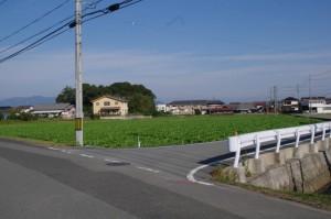 片野神明神社への交差点