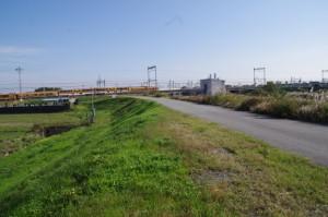 中村川の左岸堤防