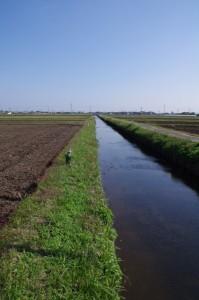水路(中原神社から三渡川への途中)