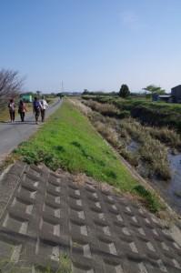 三渡川左岸堤防