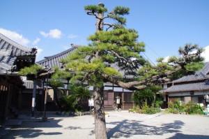 神楽寺(み歴マ 伊勢(20)久米-A 12)