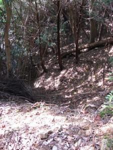 崩落した「是従神宮宮域」の石柱