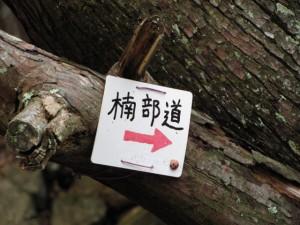 磯部道への分岐 - 宇治岳道