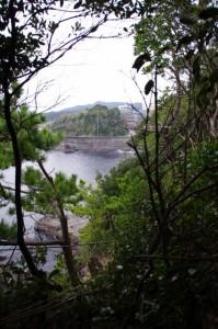 鎧崎から前の浜付近を見下ろす