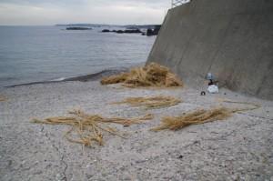 前の浜(二船祭)