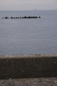堤防上のお供え(二船祭)