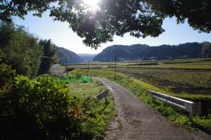 木津川沿いに初瀬街道へ