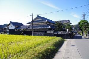 安楽寺付近