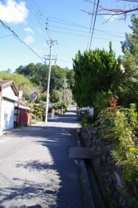 大村神社の参道(み歴マ 初瀬 101)