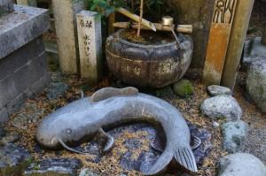 水かけなまず(大村神社)