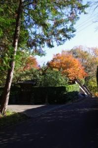 桜山公園付近