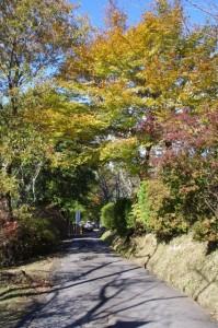 桜山公園から大村神社 南参道へ
