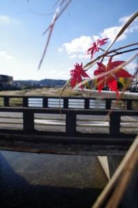 阿保橋と木津川の下流方向を望む