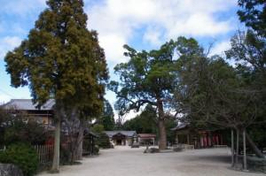 野邊野神社