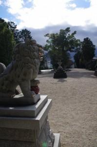 拝殿からの風景(野邊野神社)