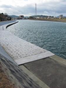 勢田大橋から橘神社への途中(勢田川右岸)