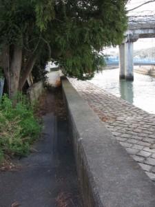 小田橋から上流方向へ