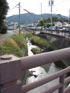 八束橋から望む勢田川の上流