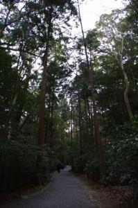 度会国御神社から北御門参道へ(外宮)