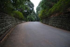石上神宮の参道