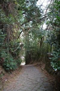 山の辺の道 石畳(内山永久寺跡~夜都伎神社)