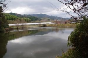 夜都伎神社近くの池