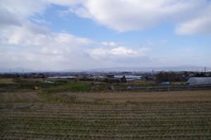 山の辺の道(夜都伎神社~竹之内町環濠集落)