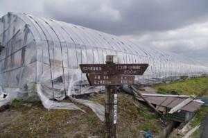竹之内町環濠集落への分岐道標(山の辺の道)