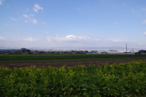 山の辺の道(竹之内町環濠集落~萱生町環濠集落)