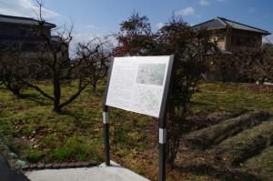 大和古墳群の説明板