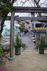 五社神社の境内から